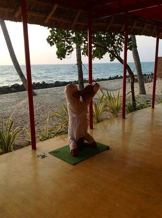 Erandia Marari Ayurveda Beach Resort: Anoop - Yogi