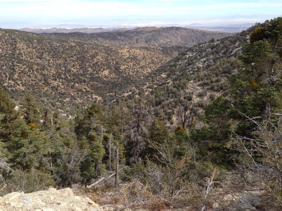 Cienaga Creek Ranch: Breath taking