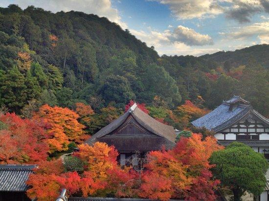 Nanzen-ji Temple: Vista desde el templo