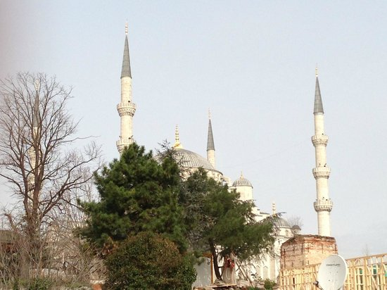 Almina Hotel : The Blue Mosque from the rooftop terrace