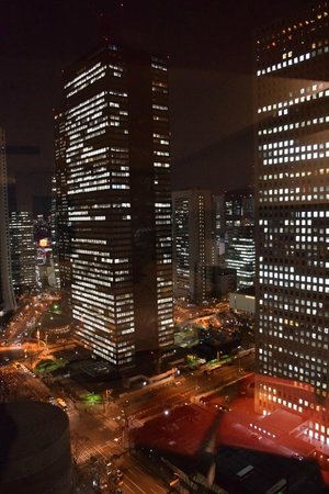 Hilton Tokyo: View from 34th floor