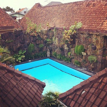 Prambanan Guesthouse: View from rooms on top floor.