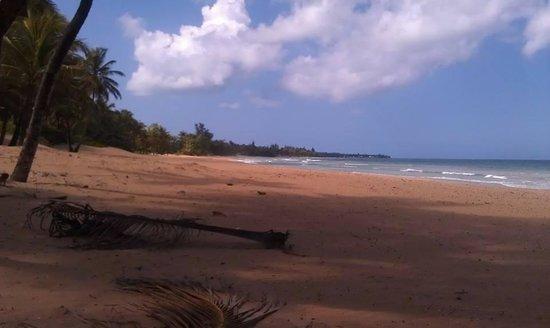 Wyndham Grand Rio Mar Beach Resort & Spa: the beach was very quiet