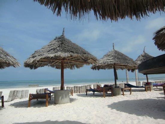 Waridi Beach Resort & Spa: bella spiaggia
