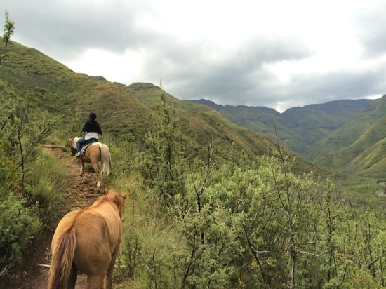 Maliba Mountain Lodge: horse riding