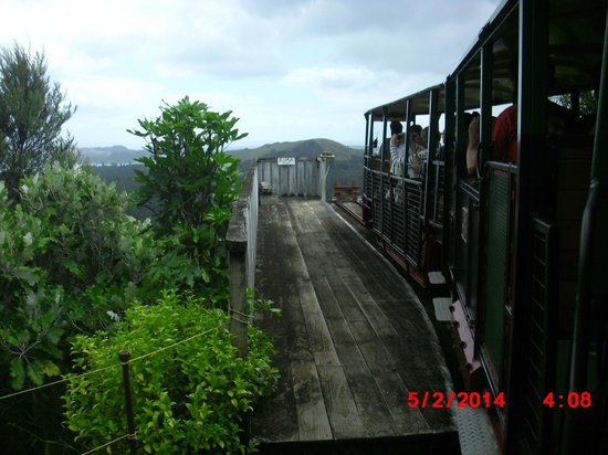 Driving Creek Railway and Potteries: At a stop point for view