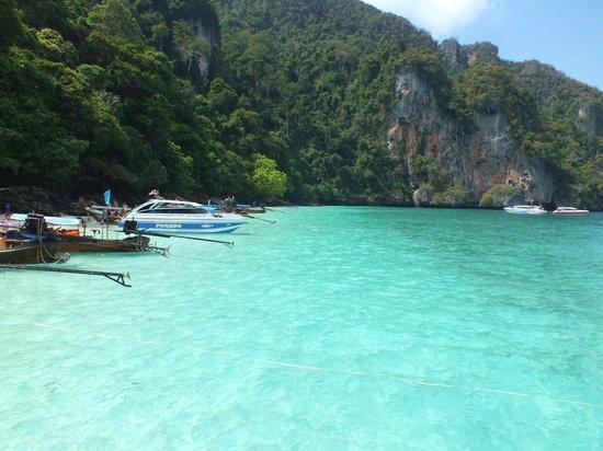 Phi Phi Island Speedboat Tour Tripadvisor