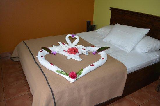 Volcano Lodge & Springs: Towel art