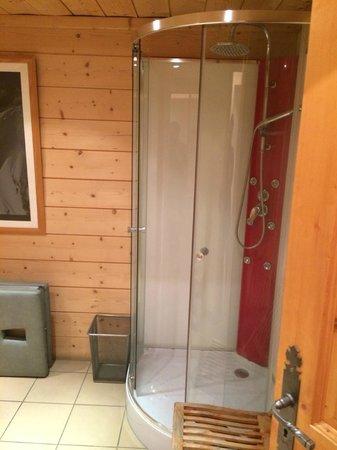 Chalet Les Jumelles: Rainfall shower in sauna room