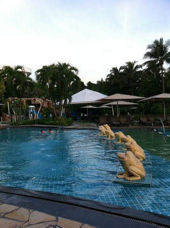 Shangri-La's Rasa Sentosa Resort & Spa : Pool side froggies