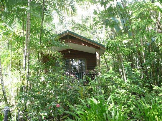 Kewarra Beach Resort & Spa : Häuschen 6