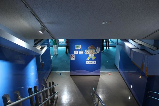 Miyakojima Marine Park: 海中展望室の入口