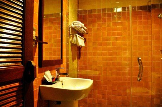 Sri Pat Guest House : Bathroom