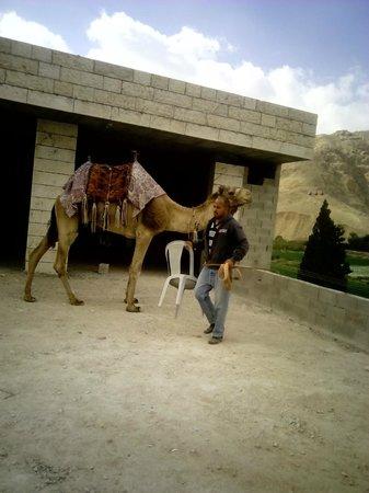 Rimonim Hotel Nazareth: alrededores de nazaret