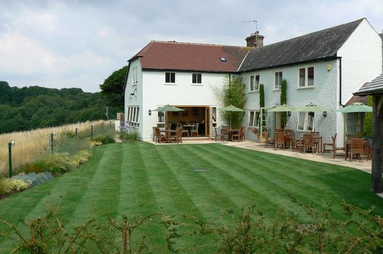 The Black Horse: The Lawn !