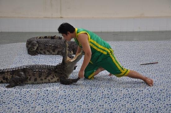 Baan chivit crocodile show: еще прием