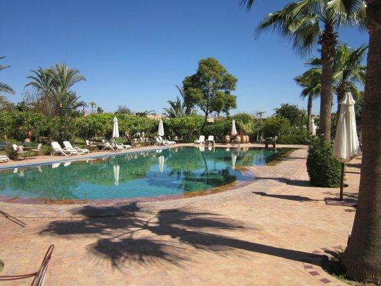 Hotel Dar Zitoune: pool