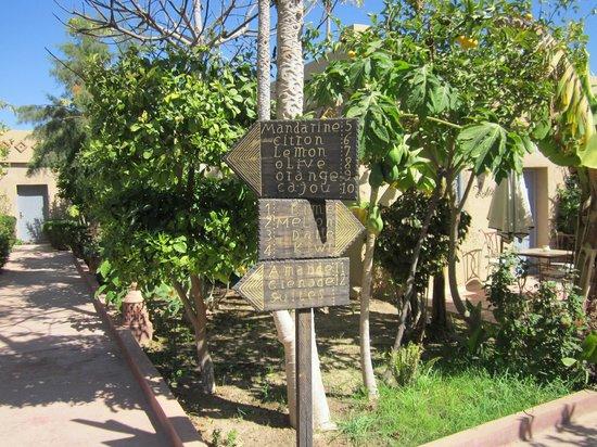 Hotel Dar Zitoune: directions