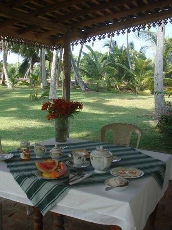 Chitra Ayurveda: Breakfast in trh garden