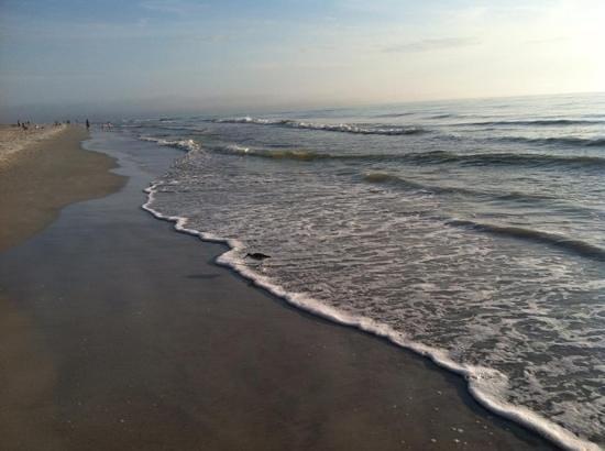 Barrett Beach Bungalows: Love this place
