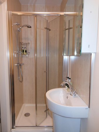 Griff House Bed & Breakfast: Modern bathroom