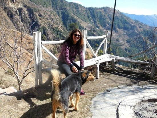 V Resorts Narkanda Cottage: WITH SHERA. SUCH A SWEET FRIENDLY DOG