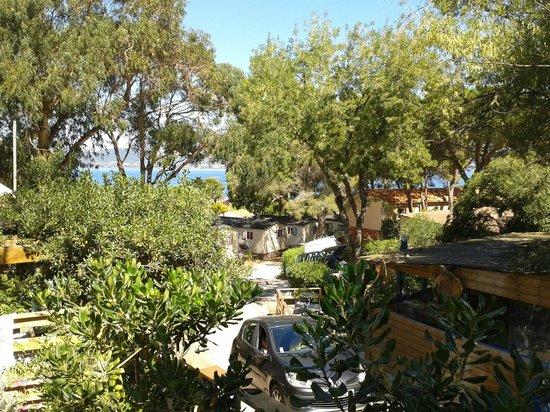 Camping Clair de Lune : Vue de la tente lodge