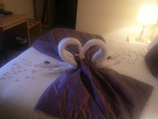 Pembroke Kilkenny : Towel swans - beautiful presentation