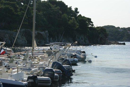 Camping Clair de Lune : Port de Giens