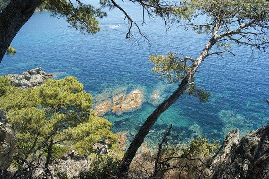 Camping Clair de Lune : Crique sur la presqu'ile de Giens