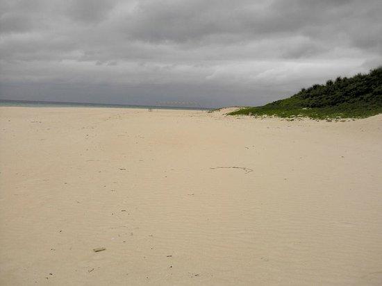 Yonaha Maehama Beach: 白砂のビーチ