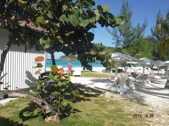Hotel Emeraude Plage: View from Villa 17
