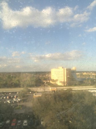 Renaissance Orlando Airport Hotel: View from my room window - maybe they should clean the windows.