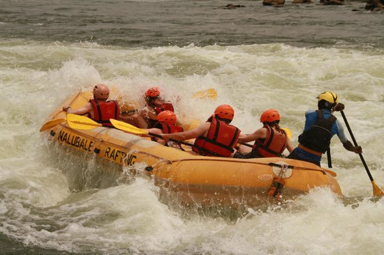 Nalubale Rafting : Great day on the Nile.