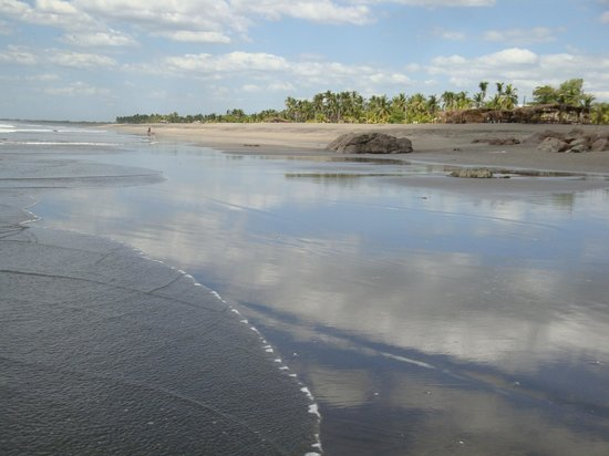 Hostal El Pulpo : Empty stretch of Playa Poneloya