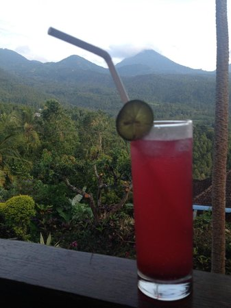 Puri Lumbung Cottages : view from the restaurant
