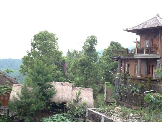 Puri Lumbung Cottages : View of cottages