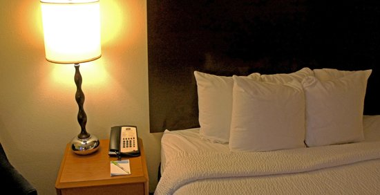 Fairfield Inn & Suites Auburn Opelika: Small Pillows