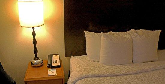 فيرفيلد إن آند سويتس ماريوت أوبورن: Small Pillows