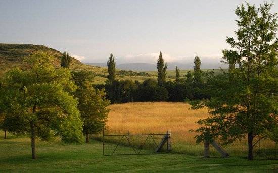 Harrismith, Sudafrica: One of our many gorgeous views