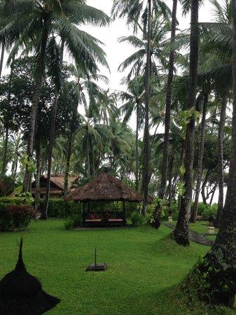 Alam Anda Ocean Front Resort & Spa: Common areas