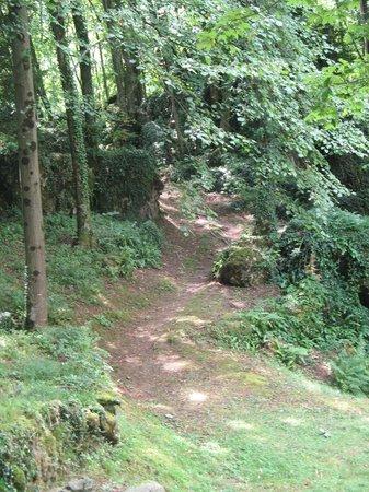 Agriturismo La Peta : Verso i boschi ...