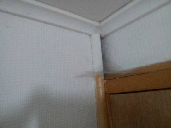 Hosteria Costanera: tela de araña en el baño