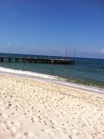 Occidental Cozumel: Beach area and pier, all diving and snorkeling tours pick up here