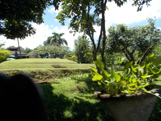 The Damai : Gardens