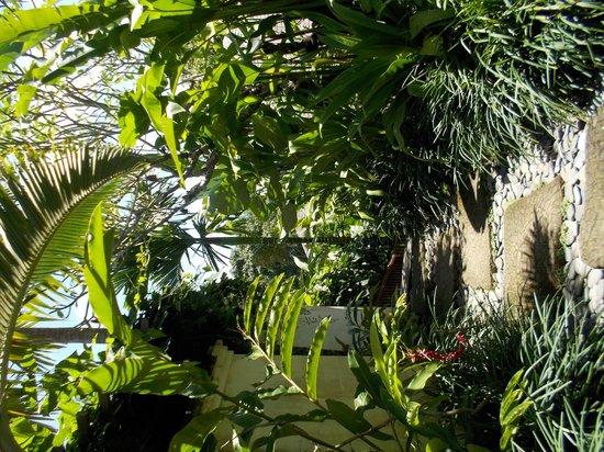 The Damai : Pool villa walkway