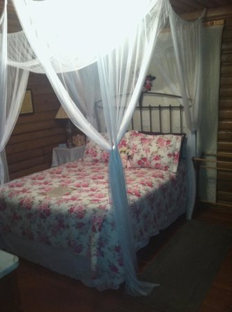 Lazy Cloud Lodge Bed and Breakfast : Log Cabin Suite