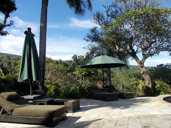 The Damai: Pool area