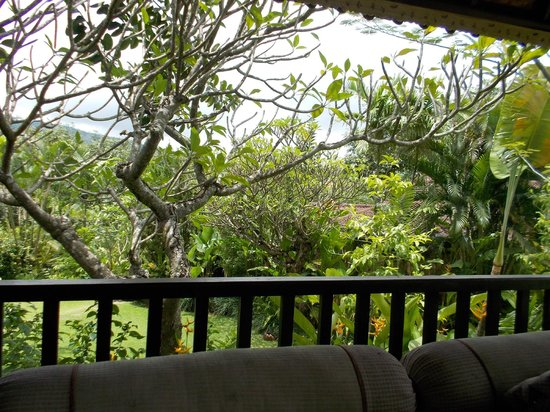 The Damai: View from pagoda