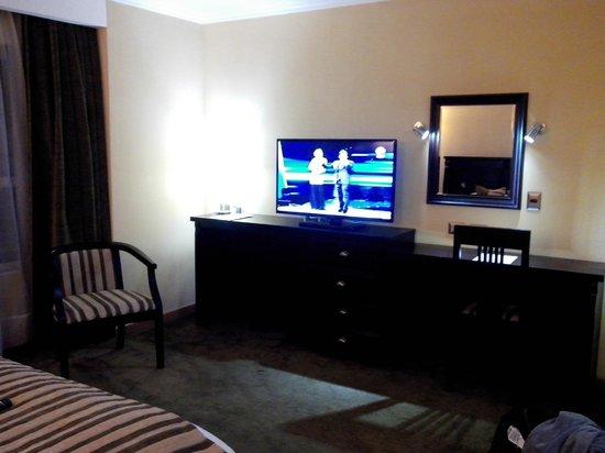 Hotel Terrano : Habitación